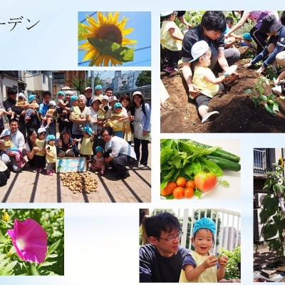 H27年度活動報告ガーデン夏