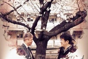 満開の桜の下で・・・